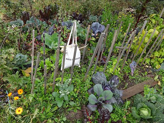 unser WG_Garten in BW gleich neben an
